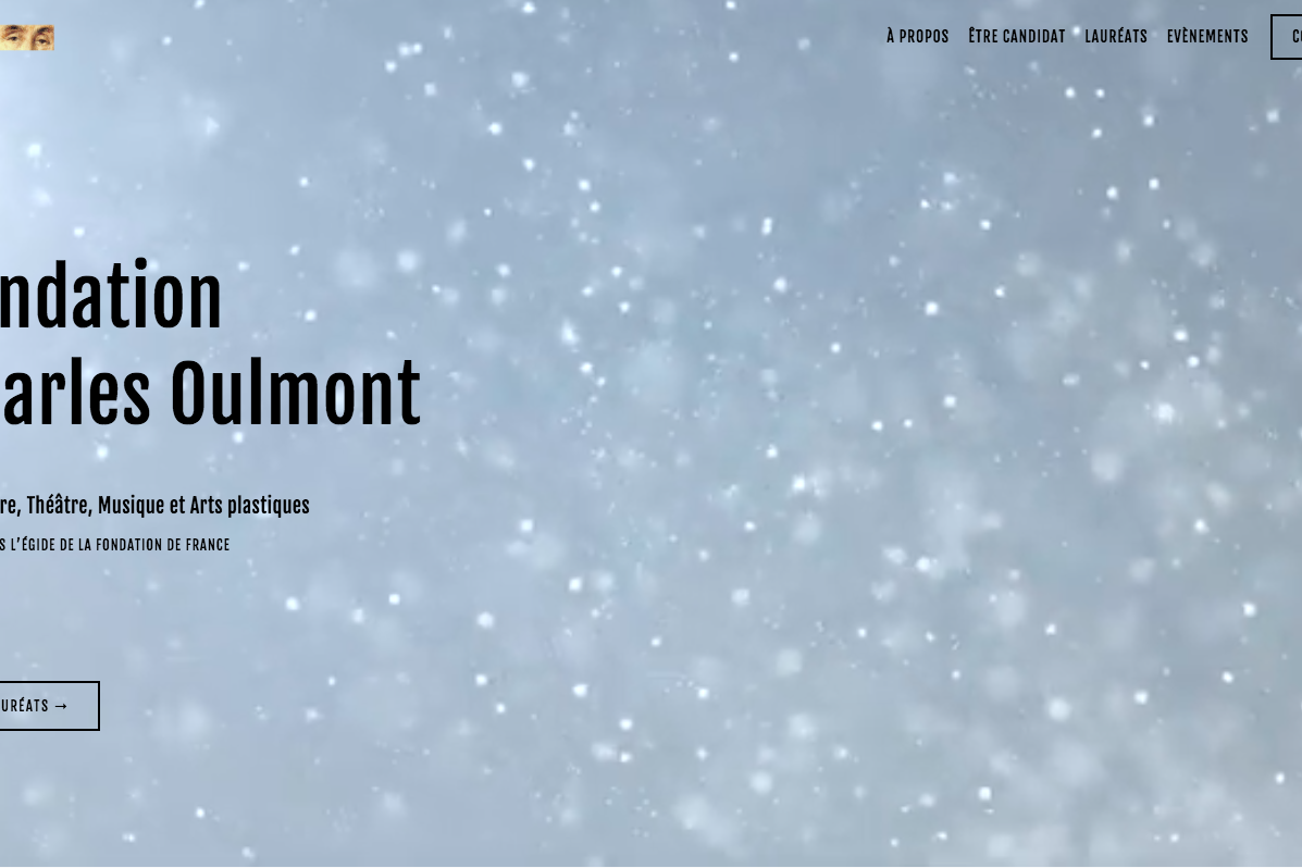 Refonte de site sur Squarespace - Fondation Charles Oulmont - Accueil - vignette - In blossom