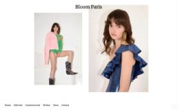 site-vitrine-bloomparis-conseil-inblossom